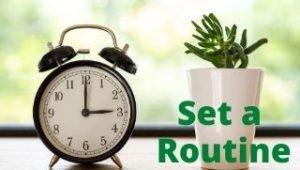 Set a routine